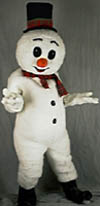[Mr. Snowman Costume Picture]